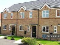 3 bedroom house in Mickleton Drive, Stockton On Tees, TS16 (3 bed)
