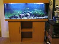 JEWEL RIO 180 L AQUARIUM IN BEECH WITH BRAND NEW CABINET