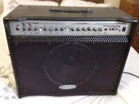 Skytronic lg 100- 100 watt guitar Amp-