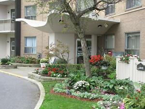 1 bedroom apartment for rent! CALL TODAY! Sarnia Sarnia Area image 15