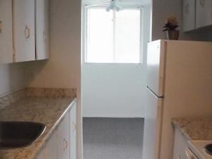2 BEDROOM APT- AVAILABLE - $250 VISA CARD AWARDED AFTER MOVE IN Kitchener / Waterloo Kitchener Area image 7
