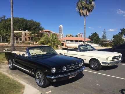 MUSTANG CAR HIRE GOLD COAST Surfers Paradise Gold Coast City Preview