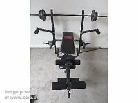 PRO POWER BENCH WITH FLY - NO weights included