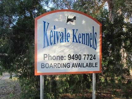 Keivale Kennels