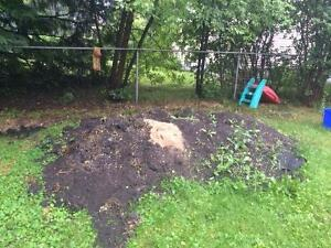 FREE clean soil/fill from yard