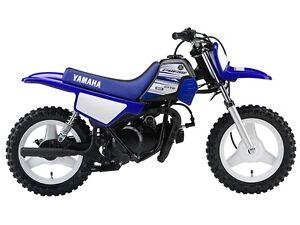 2016 Yamaha PW50 (2-Stroke)