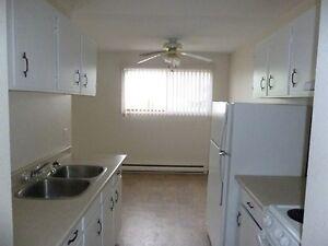 3rd floor 2 bedroom pet friendly suite $925 Jan 1st