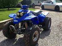 Quadzilla ram large kids quad