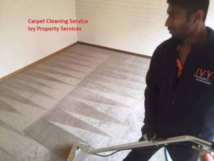 Carpet cleaning House cleaning Bond back cleaning  Service