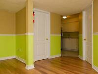 1 BR basement apt for mature quiet tenant available in Newmarket