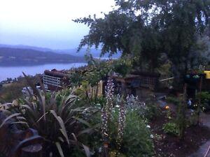 My Eden landscaping Kingston Kingborough Area Preview