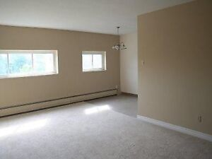 Spacious 2 bdrm steps from Fanshawe AVAIL NOW CALL 519-204-0486