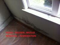 Cleaning your living space services / Mould removal