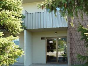 1 BR Available for rent in Stratford, ON Stratford Kitchener Area image 3