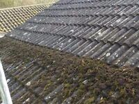 Roof & Gutters Cleaning / Moss Removal / Roof Repairs / Solar Panels Maintenance / Driveway Cleaning