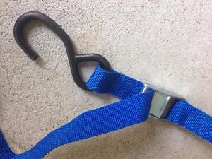 Standard Cambuckle Tiedown Straps (approximately 4.5 feet long)
