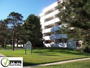 1 BR Apartment -AVAIL.  NOW-$250 PREPAID VISA WITH APPROVAL
