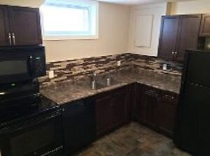 Executive 2 Bdrm Bsmt Suite in great Northgate mall location!