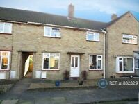 3 bedroom house in Locksley Road, Norwich, NR4 (3 bed) (#882829)
