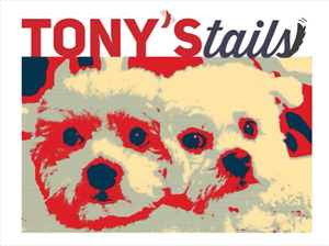 Tony's Tails- Dog Training and Walking services