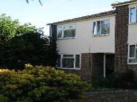 9 MacBeth Close, Colchester - SPEEDY1386