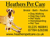 Dog Walker required to become part of Heathers Pet Care Team Based in Bath (Must live in Bath) Bath