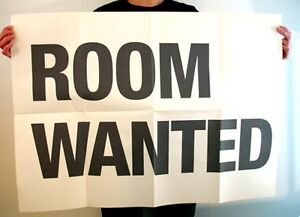 Mature male lookng for a room in Burlington or Oakville area