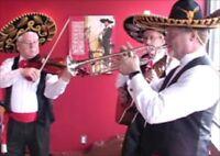Professional Mariachi solo to trio - including a Trumpet!