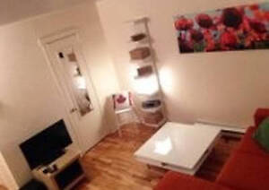 3 1/2 fully furnished. Available July, min. 1 month