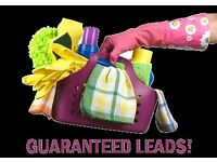 Carpet cleaning and domestic clean