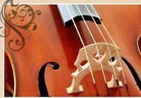 Cours de violon et/ou d'éveil musical à Saint-Lazare