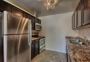 1 Bedroom/Ensuite Laundry- South London- Avail. Jan 01/17 London Ontario image 1