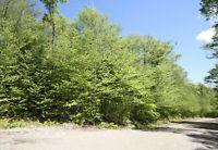 Terrain av. du Bois-Joli à vendre à Chertsey. Centris 15075348 Lanaudière Québec Preview