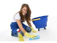 Professional cleaning company for your premises