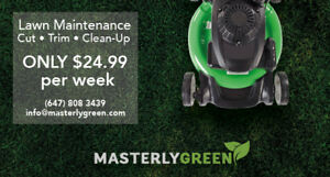 Lawn Care in Mississauga - Simple, Cheap, Professional