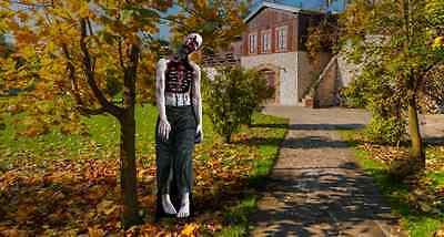 ZOMBIE WALKER OUTDOOR HALLOWEEN YARD DISPLAY LIFESIZE STANDUP STANDEE CUTOUT (Outdoor Halloween Displays)