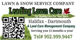 Leading Lawn Care