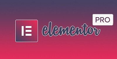 Elementor Pro V3.0.8- Wordpress Page Builder Plugin