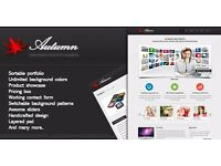 Professional and Affordable Web Application Development, Promotional offer!