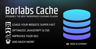Borlabs Cache Wordpress Caching Plugin Lastest Version Original Files
