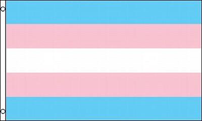 Transgender Pride Flag 3x5 ft Banner Pink ...