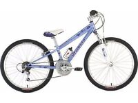 "(2228) 24"" Lightweight Aluminium SPECIALIZED GIRLS MOUNTAIN BIKE BICYCLE Age: 7-10 Height: 125-140cm"