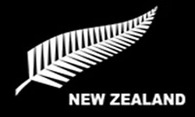 SILVER FERN NEW ZEALAND FLAG 5' x 3' NZ Rugby Cricket