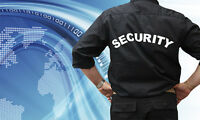 Wanted Security Guards for Sites Across the GTA