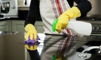 EXPERIENCED HOUSE CLEANER- Windows/Room/Floor/Bathroom/Kitchen