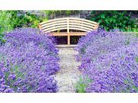 Garden Tutoring