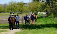 Summer Volunteers Needed - Horse Riding Day Camp
