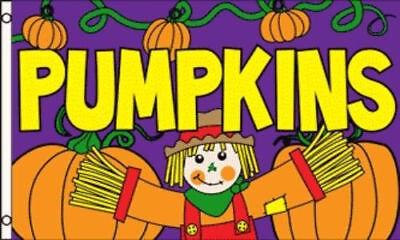 3x5 PUMPKINS For Sale Flag Halloween Pumpkin Patch Advertising Banner Outdoor - Advertising Halloween