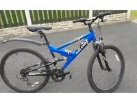 Raleigh Vulture Teenager/Young Adult Bike