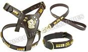 Staffordshire Bull Terrier Harness Lead